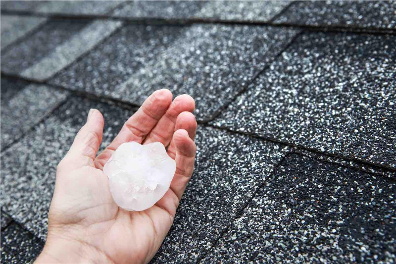 A person holding a large piece of hail next to a roof shingle.