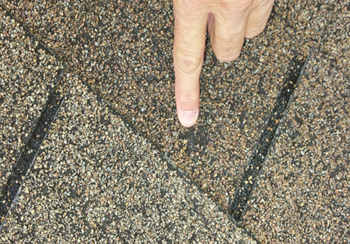 A person pointing to hail damage on a roof shingle.